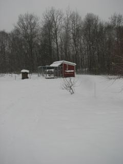 The chicken coop is blanketed in snow.