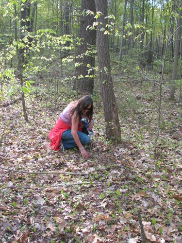 Mom looking for mushrooms.